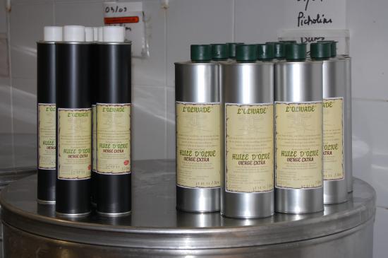 Extra virgin olive oil metal bottle